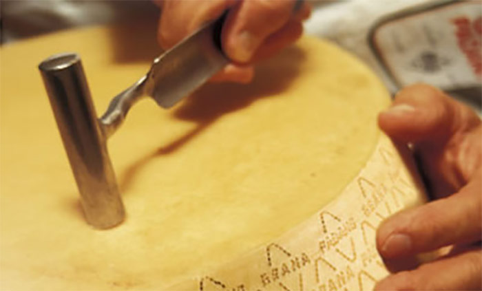 Grana Padano and Parmigiano Reggiano - Particular aspects and specifications